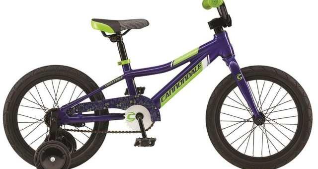 お子様の成長を見守る!おすすめのキッズ自転車ブランド5つ
