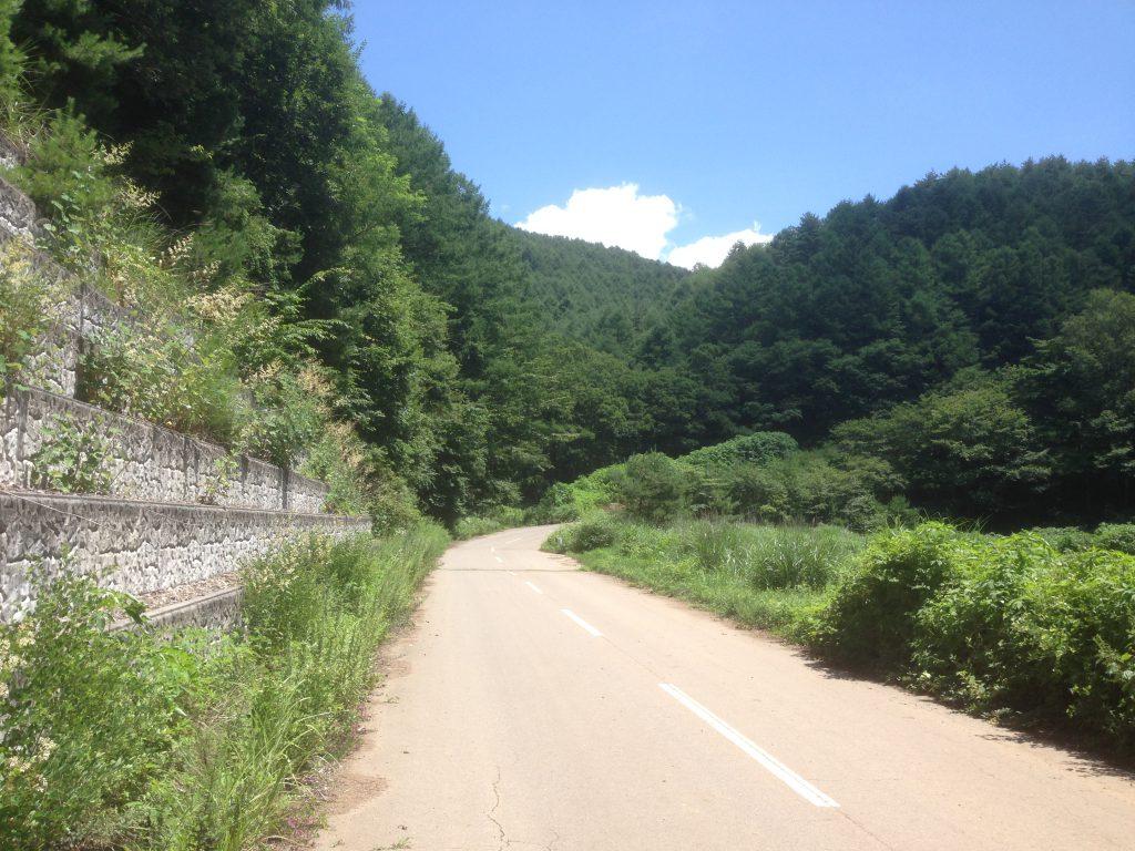 ところどころに出てくる山道の日陰が涼しく快適なんです