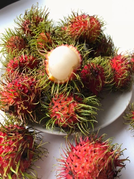 Rambutans, on a white plate and on a white background around the plate, with one cut open