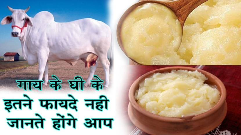 benefits of cow ghee in hindi