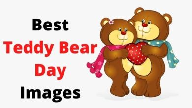 Photo of Best Happy Teddy Bear Day 2022 Images
