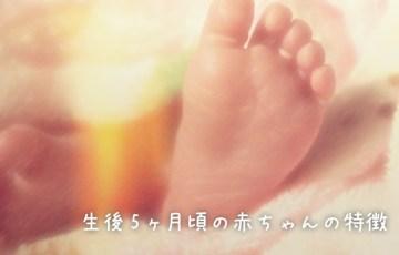 生後5ヶ月頃の赤ちゃんの特徴