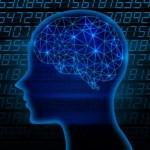 【小学生低学年・中学年向け】工作・研究・実験 まとめてできる!? 電脳サーキットで自由研究をしよう!