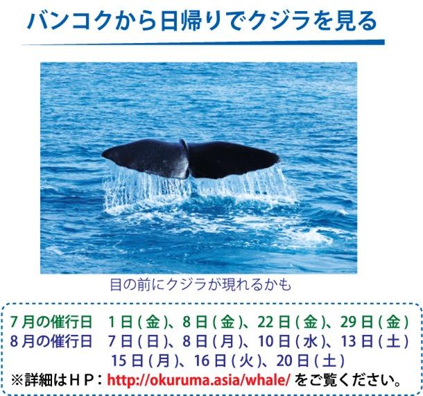 バンコクから日帰りでクジラを見る