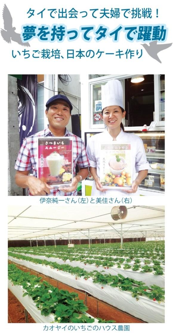 タイで出会って夫婦で挑戦!いちご栽培、日本のケーキ作り