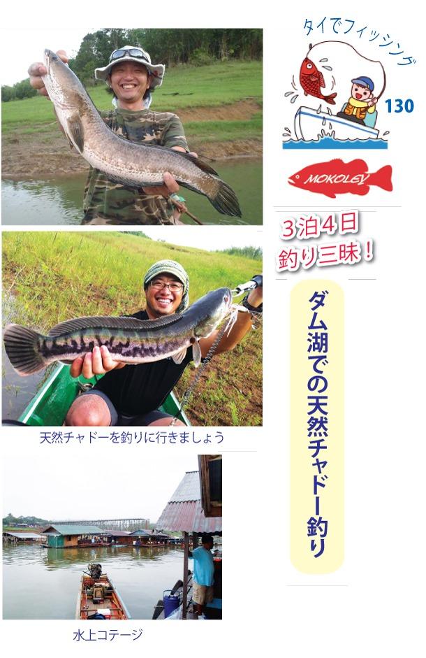 「Mokoley(モコリー)」でダム湖での天然チャドー釣り