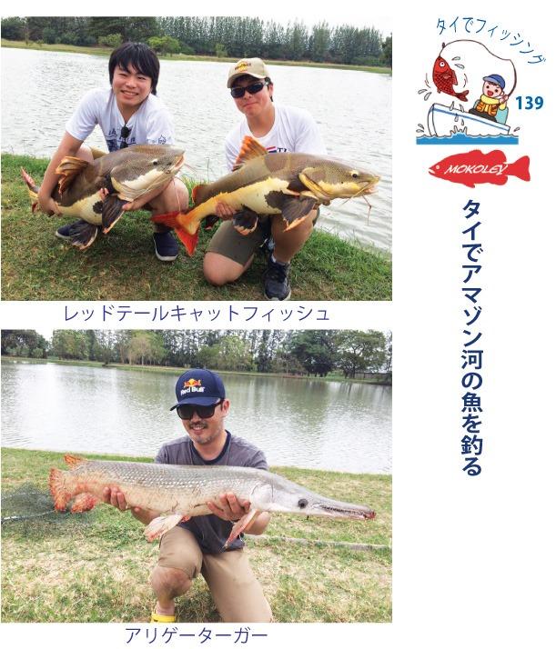 タイでアマゾン河の魚を釣る