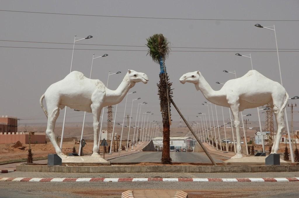 Von Wien nach Dakar für einen guten Zweck 2011