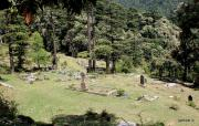 View of graveyard from road