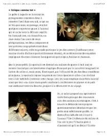 Emmanuelle Laroche Histoires à plumes et à poils JEU Revue de théâtre Page 3