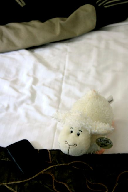 the sleepy sheepy