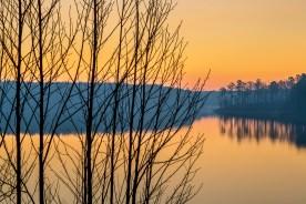 Winter Branches No.2 — Jordan Lake, NC © jj raia