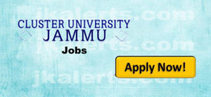 cluster university jammu jobs