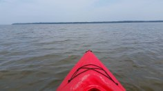 This is the best picture I had of the potomac at the level that the photograph was taken
