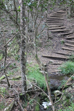 more steps!