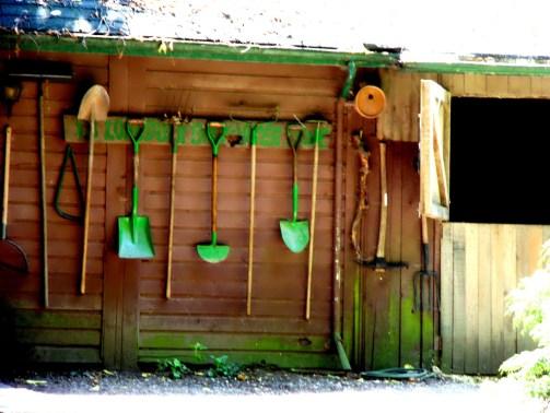 Photo by www.metaphoricalplatypus.com