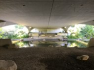 Under the bridge, I look across the river to the paved trail.