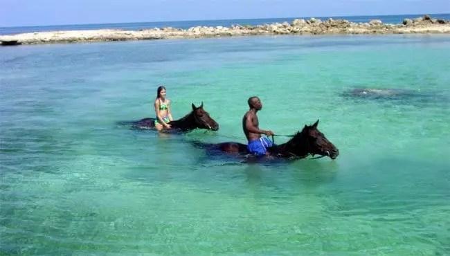 Swimming on horseback