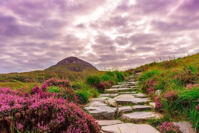 Tips For A Terrific First Trip To Ireland