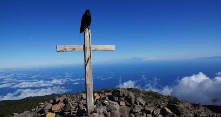 ~ guardian of Pico de la Nieve ~