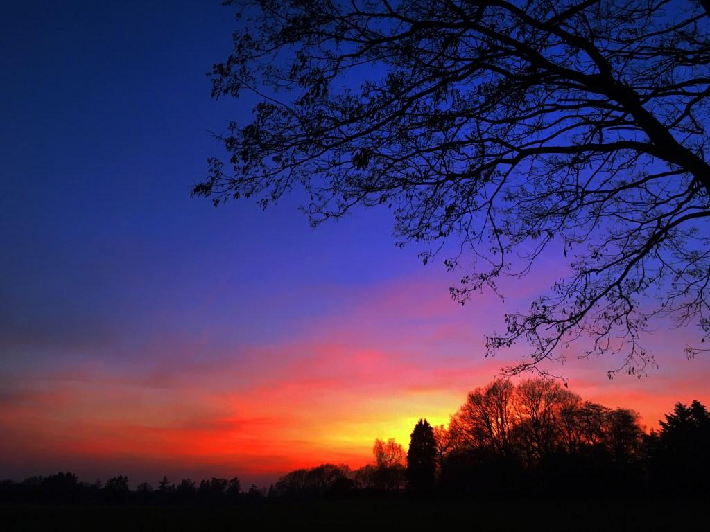 De felgekleurde hemel.