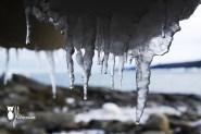 Gaspesie H2013_Glacons