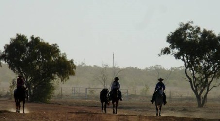How the Outback led the way back
