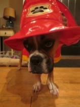 Fireman Frank 2