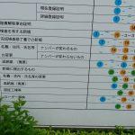 BMW325i E46 ユーザー車検(春日部陸運局)