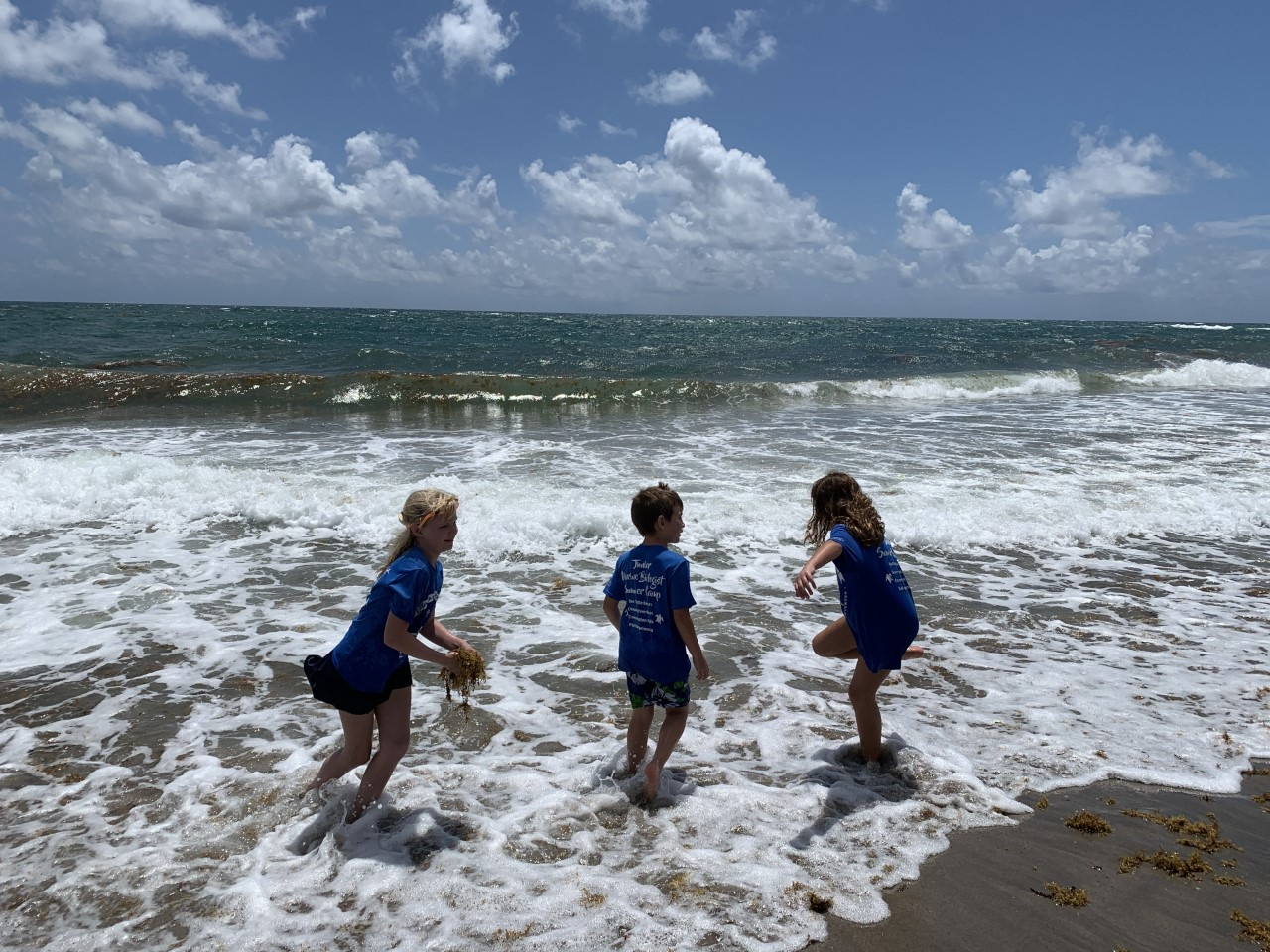 Ck Vanishing Ecosystems Debris Free Seas