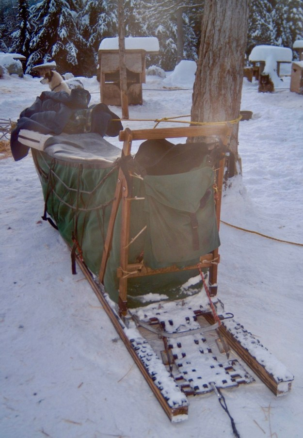 Dog sled from the rear