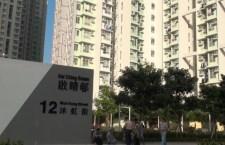 建制派在揭發鉛水問題屋邨的選區中囊括多個議席。(影片截圖)