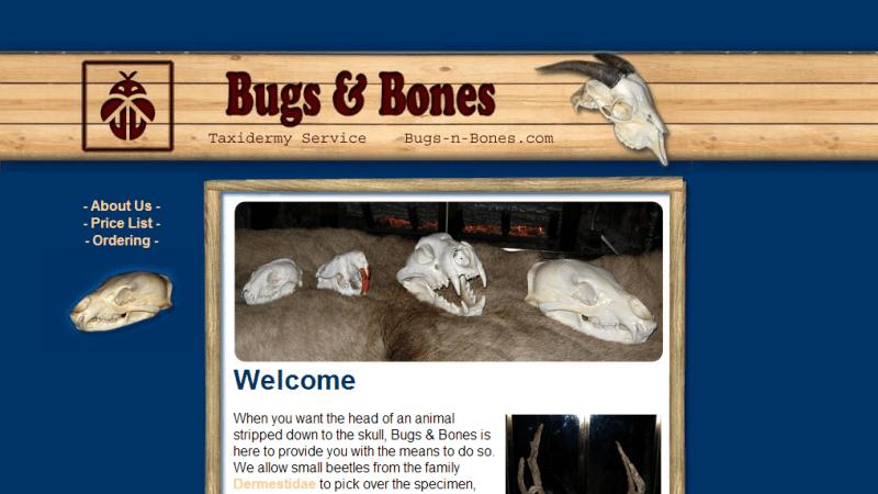 bugsnbones