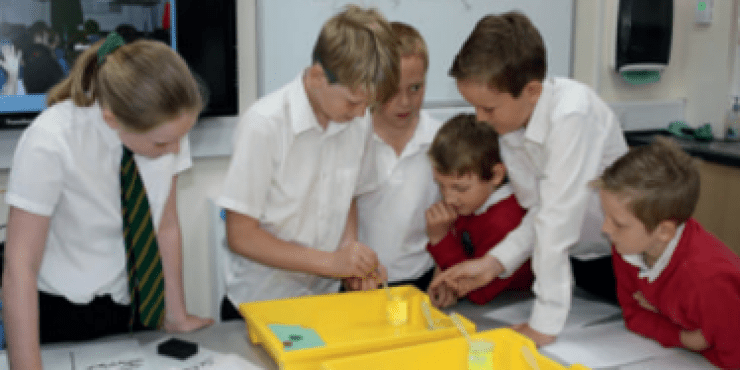 INSET: Primary Science Investigation & Scientific Enquiry