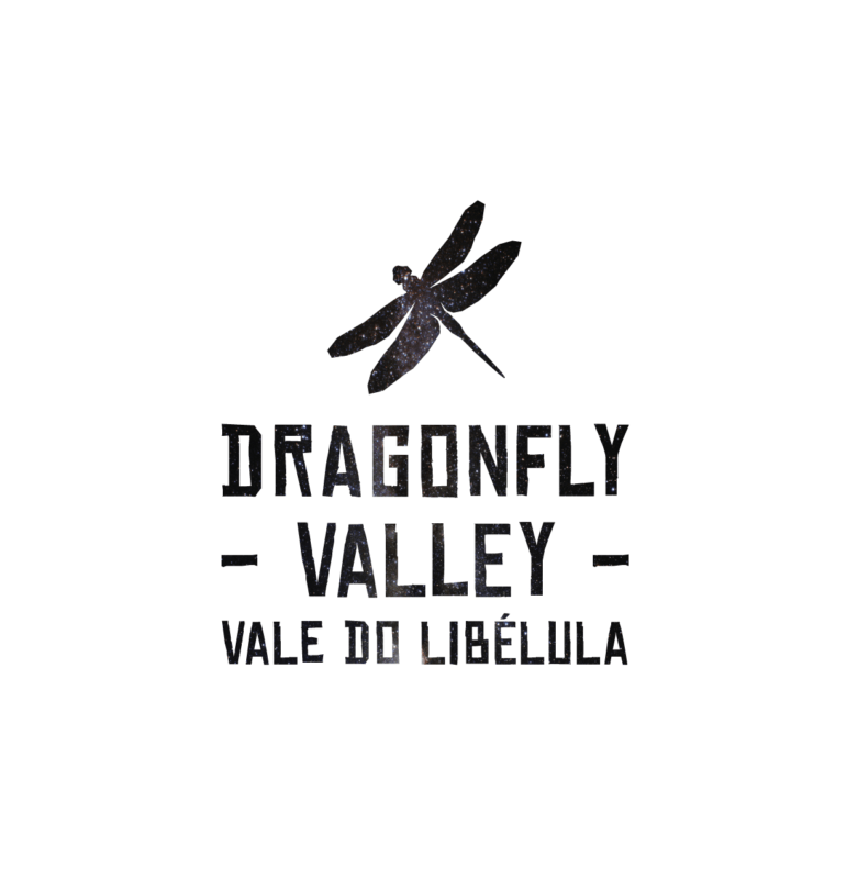 dragonfly-valley-logo
