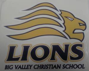 Lions Big Valley Christian School