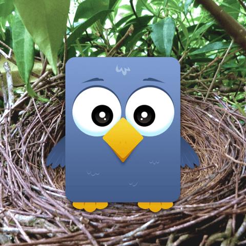 Twitter icon illustration