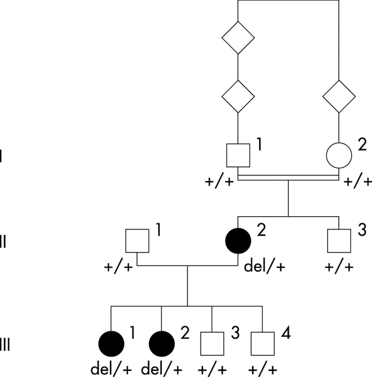 Evidence Of Autosomal Dominant Leber Congenital Amaurosis