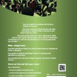 Antipolitique : Demain la synarchie !