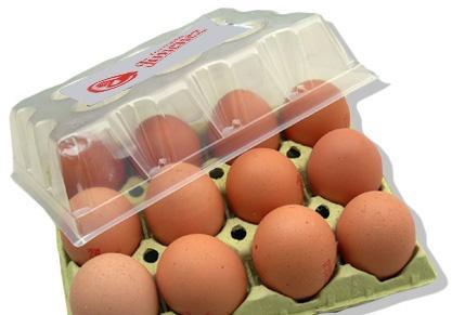huevos-pozanco