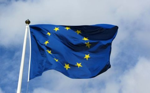 EU_swexit_peter lundgren_sverigedemokraterna_carl bildt