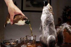 Es la cerveza más cara, fuerte y más macabra del mundo. (Foto: Cortesía BrevDog) - PULSAR PARA AMPLIAR -