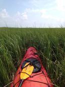 Kayaking SC