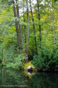 tiergartenpark-4