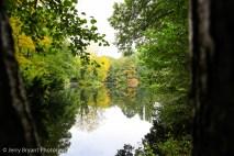 tiergartenpark-6