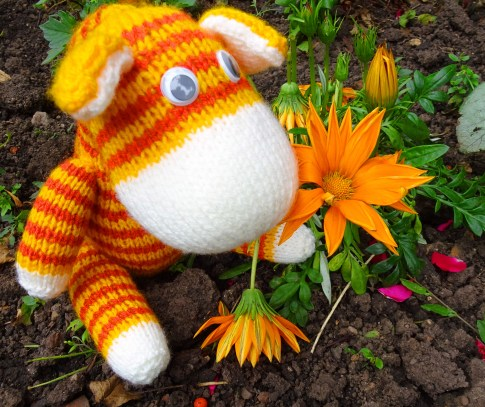 Knitted Toy - Gerty the Giraffe