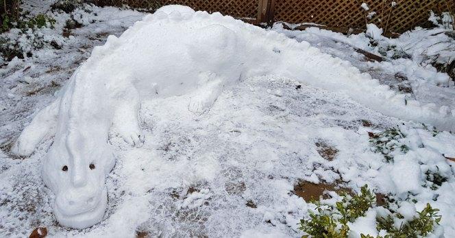 snowdragon1