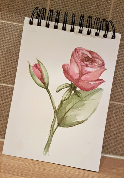 Day-8---Flowers,-Roses2