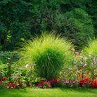 Création et entretien de massifs fleuris | Jo votre jardinier paysagiste à Chevillon, Charny Orée de Puisaye, Yonne (89) | www.jo-votre-jardinier-paysagiste.fr