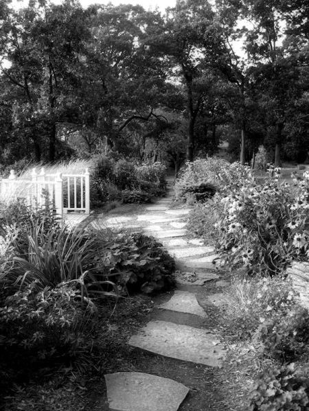 Black and white photo of stone path through a garden taken by Joana Miranda